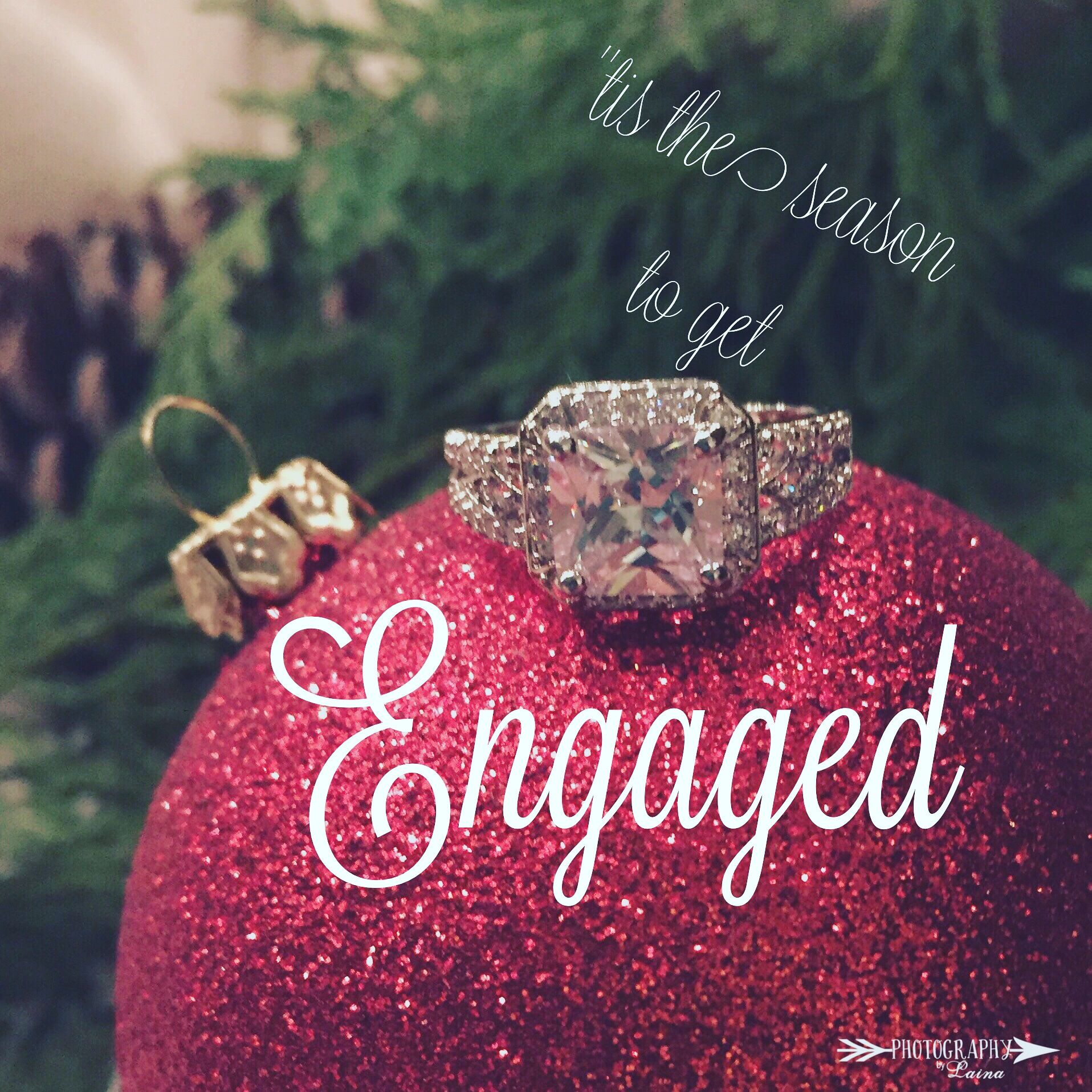 Christmas rings engagement photo wedding ring photos