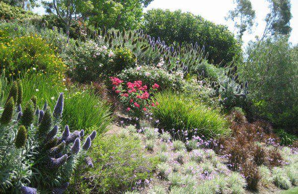 garten am hang anlegen gartenpflanzen blumen | garten | pinterest - Garten Am Hang