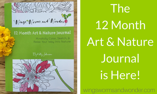 Drum roll please………… The Wings, Worms, and Wonder 12 Month Art & Nature Journal is officially released!! (Cue the cymbal crash!) I [...]