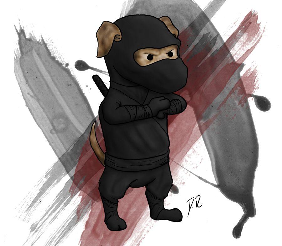 Ninja Dog | Dogs