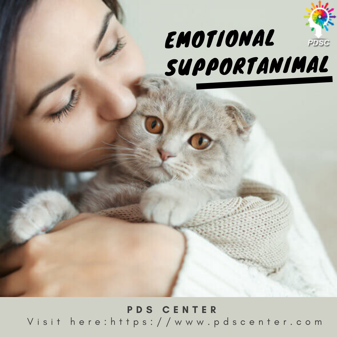 Pin on Emotional support animal