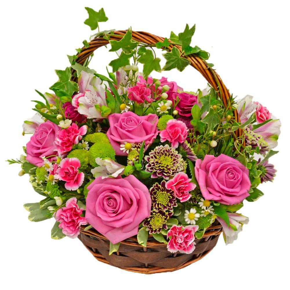 тест, новые открытки с днем рождения корзины цветов современной