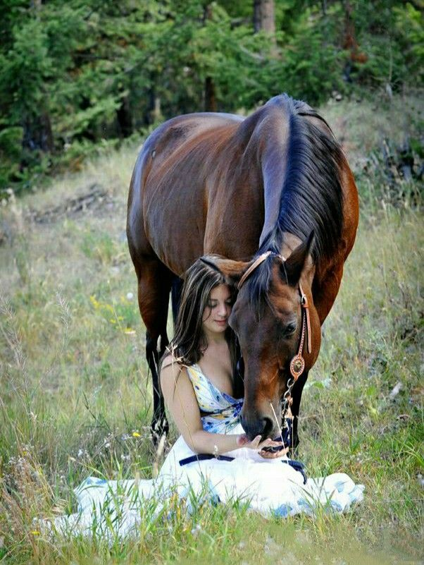 Пин от пользователя Руслан на доске Красивые лошади в 2020 ...