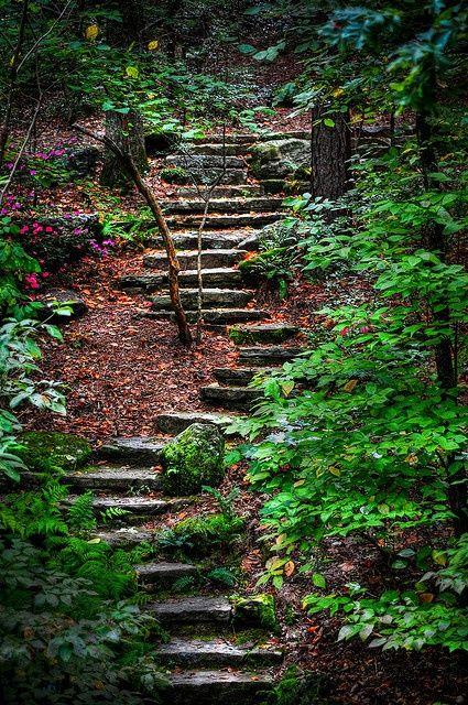 astonishing of paths