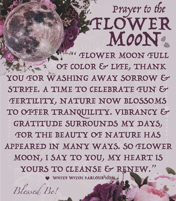 MAY FLOWER MOON PRAYER~ white witch parlour