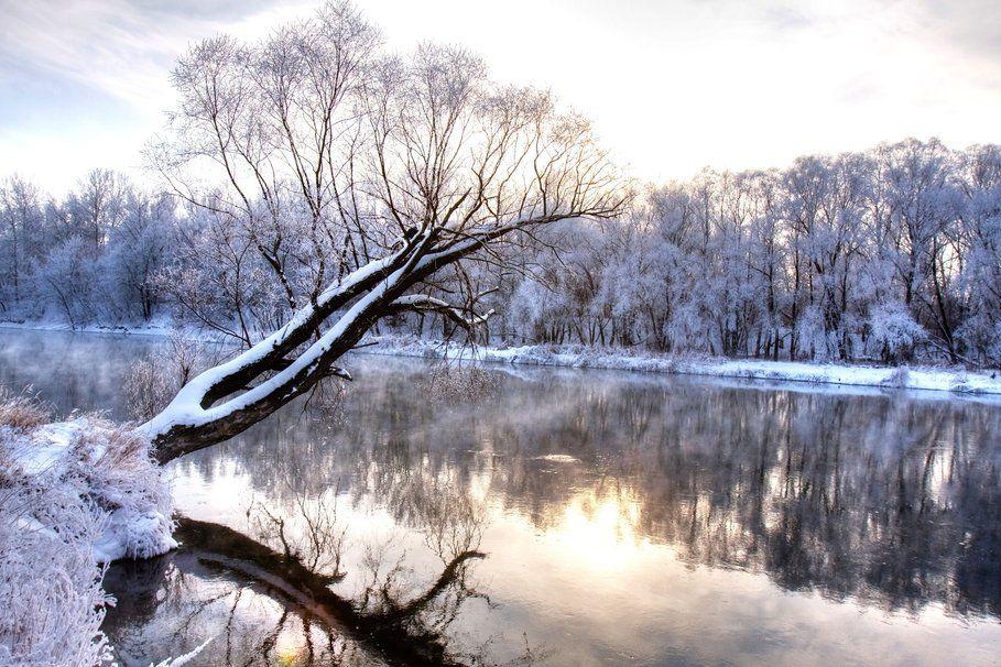 Fiume di inverno, ramo, congelato, foresta, paesaggio natura, stagione fredda, paese delle meraviglie, gelo File vettoriale