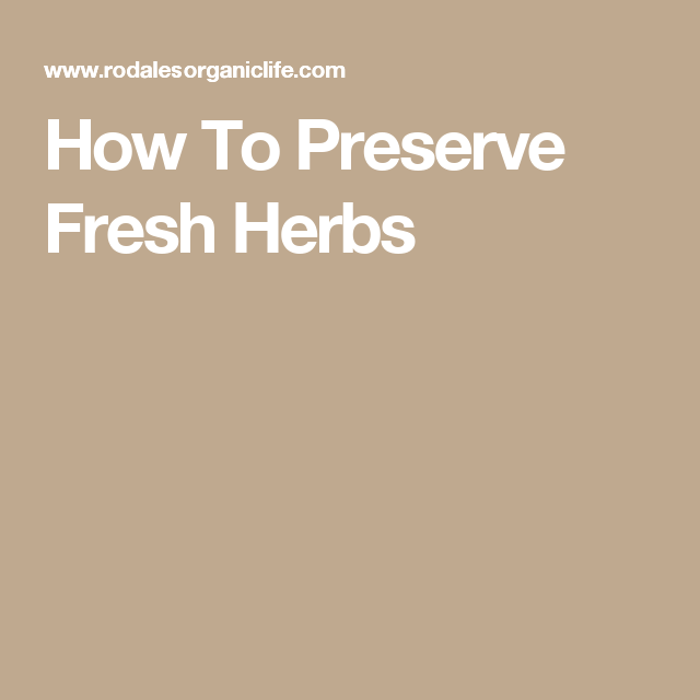 How To Preserve Fresh Herbs