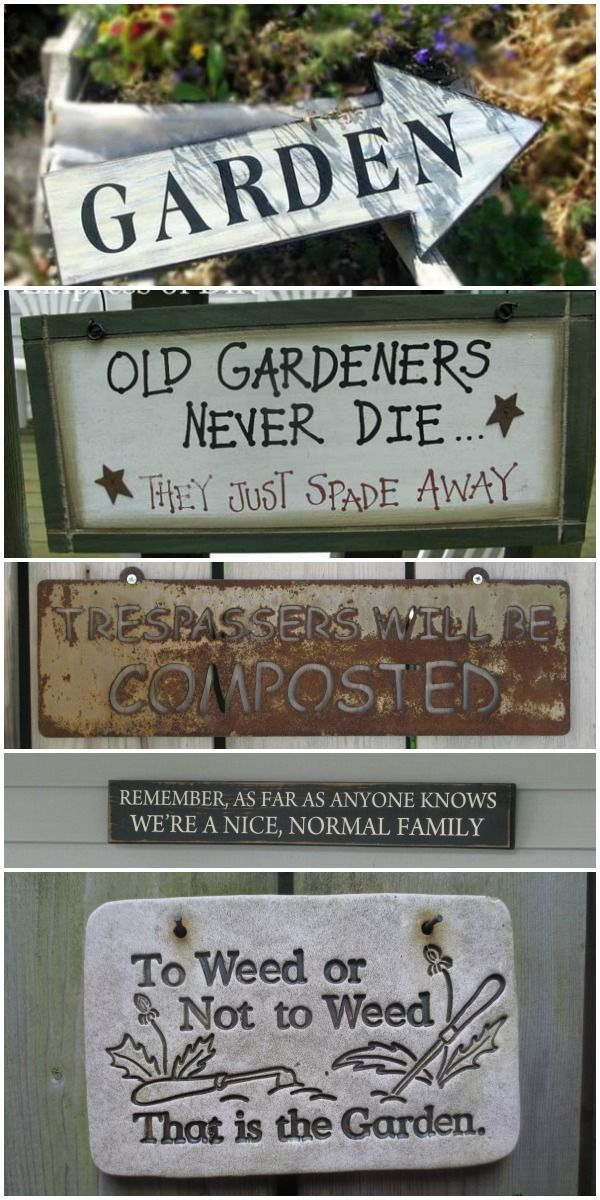 A Whole Collection Of Fun Garden Signs. Old Gardeners Never Die, They Just  Spade Away!