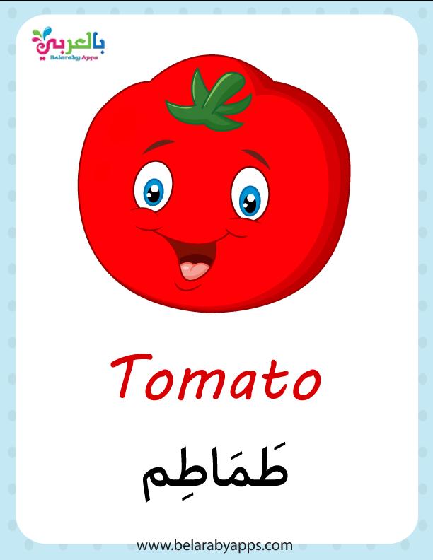 اسماء الخضروات بالانجليزي والعربي بالصور فلاش كارد الخضروات بالعربي نتعلم Tomato
