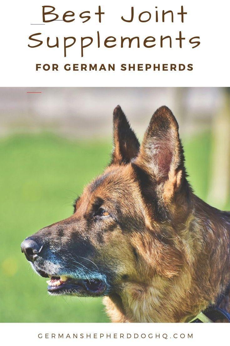 Best Joint Supplements For German Shepherds German Shepherd Dog