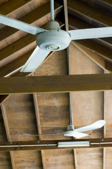 Fans for main barn | Architecture | Home decor, Ceiling fan