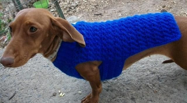 1217 Criss Cross Dog Sweater Xs Lg Dachshund Crochet And