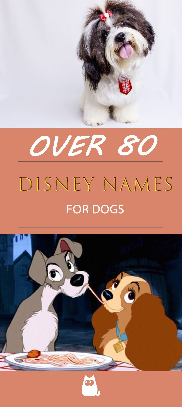 Disney Dog Names With Pictures