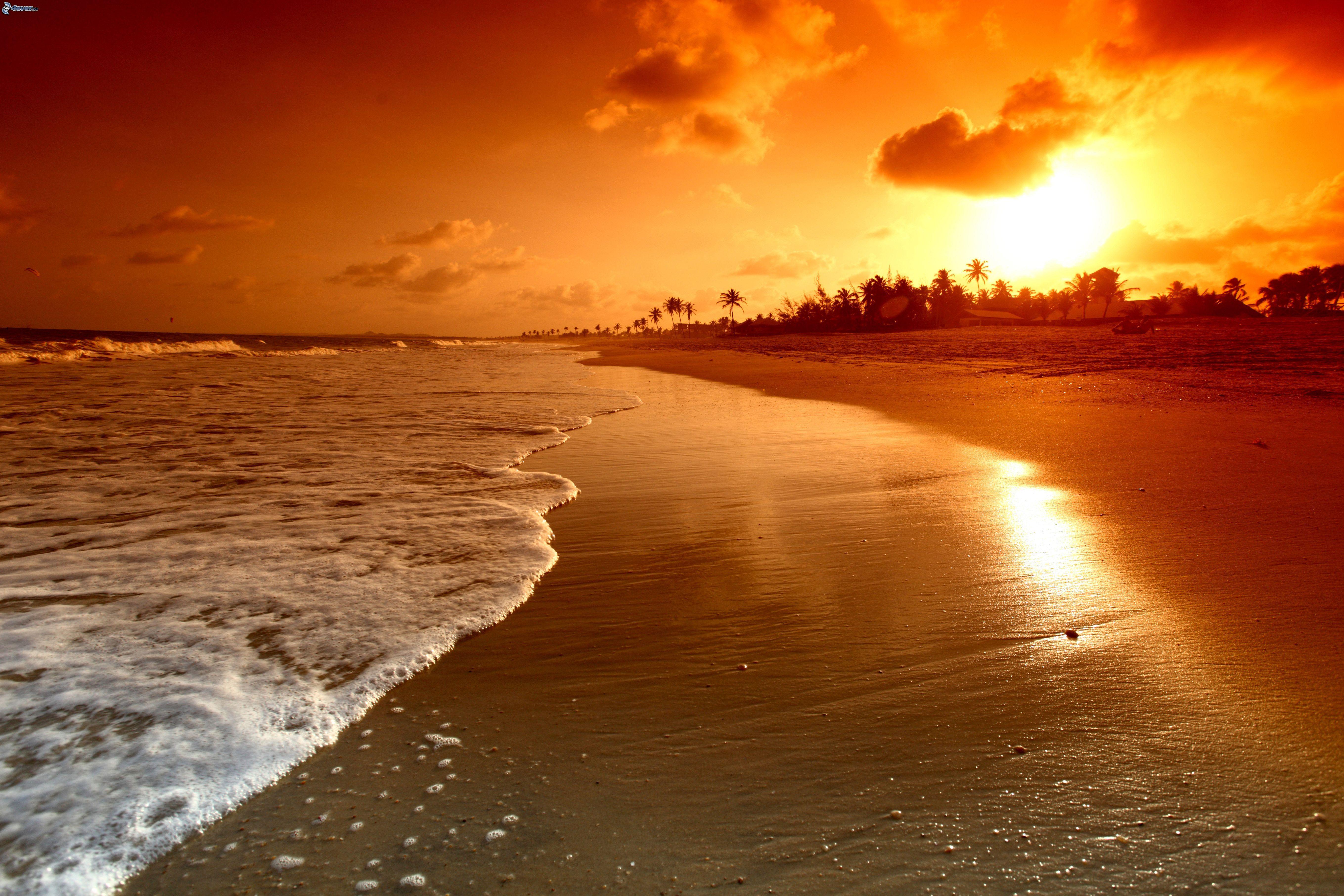 Atardeceres En La Playa Con Palmeras