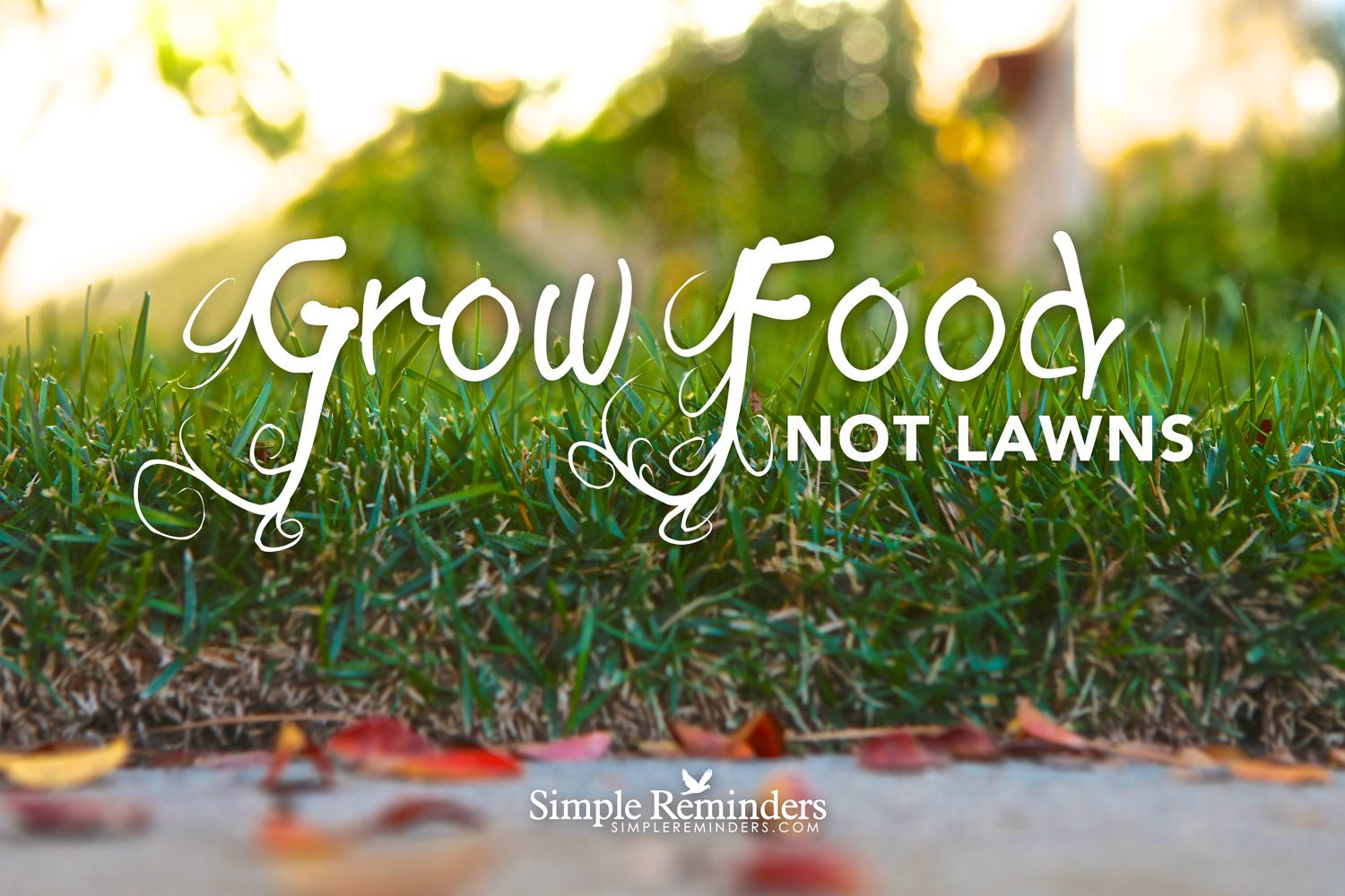 Grow Food not Lawns ~Simple Reminders  #revolution #lawn #grow #food #nutrition #garden #health #yardwork  @SIMPLE Comunicación Reminders