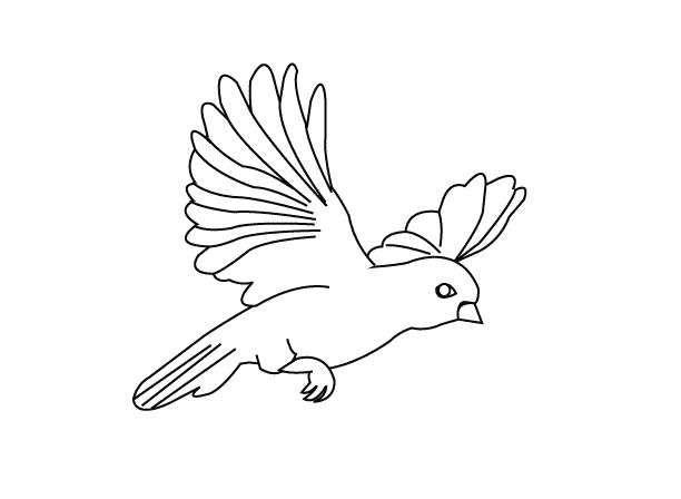 Kuş Boyama Sayfası Renkli Dünya Pinterest Bird Coloring Pages