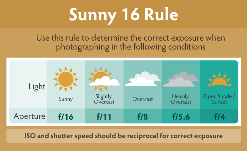 Portrait Of A Landscape Mastering The Art Of Outdoor Photography Sunny 16 Rule Digital Photography Lighting Outdoor Photography Tips