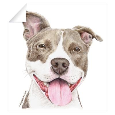 Pencil drawing pitbull pencil drawings chien dessin - Dessin de pitbull ...
