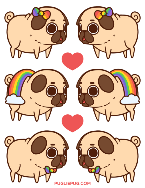 Such Is Love Such Is Life Pugs Pinterest Pugs Cute