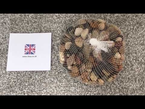 Assorted Browns Natural Decorative Stones For Vases Craft
