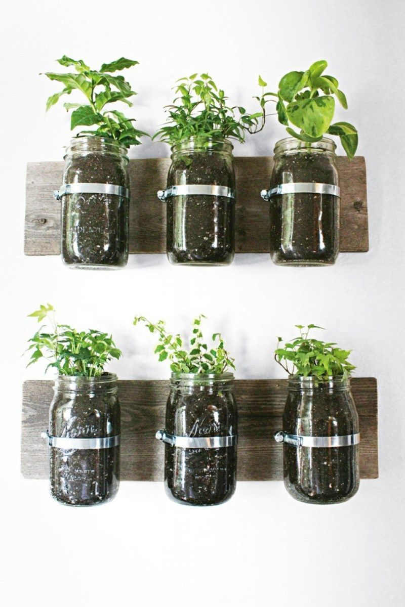 20 awesome diy project of hanging planter for wall ide on indoor herb garden diy wall mason jars id=17596