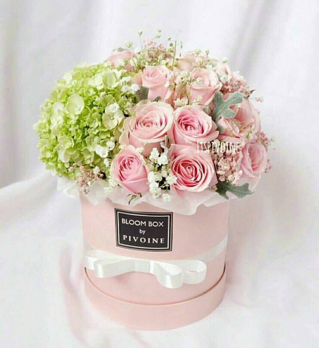 Pin by Liza Dinata on FLOWER BOX 4 | Pinterest | Flower, Flower ...