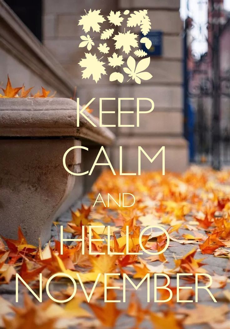 Keep Calm And Hello November