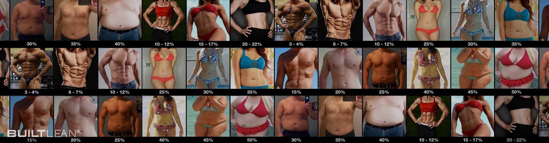 Percentage Of Body Fat In Women