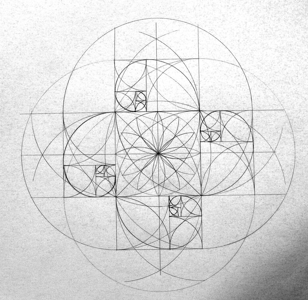 Fibonacci sequence Phi spirals