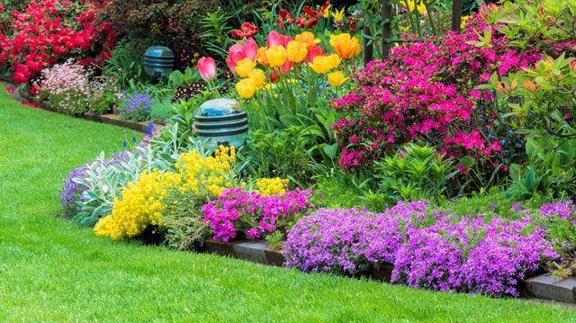 Blumenbeet anlegen - 3 Grundkriterien die Sie vorher wissen müssen - reihenhausgarten vorher nachher