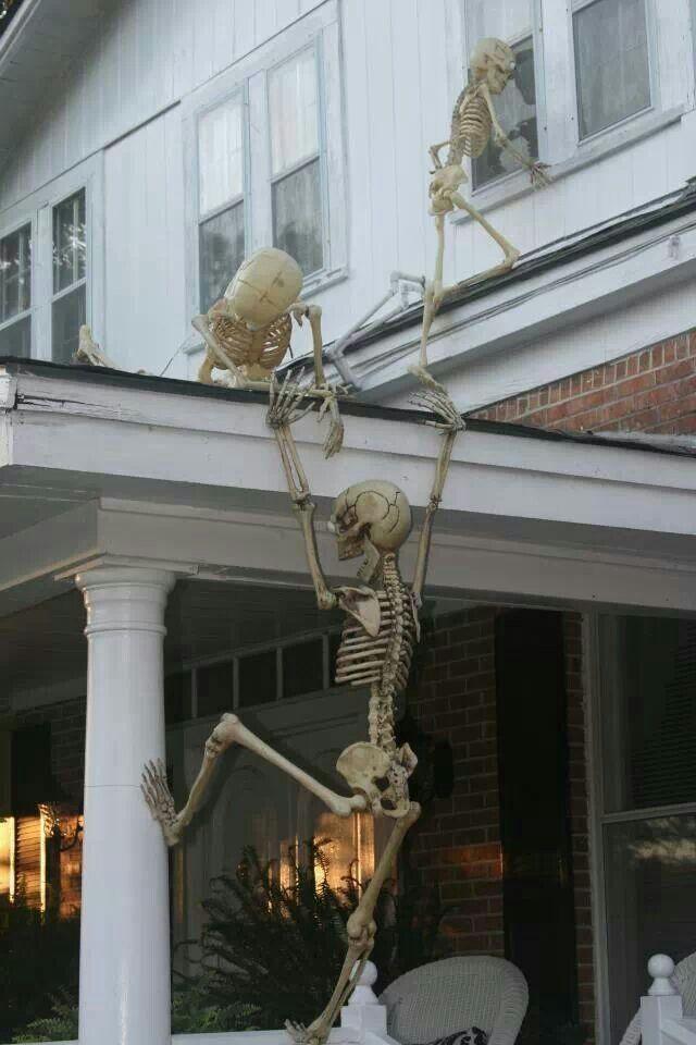 DIY Outdoor Halloween Decorating Dark, Halloween ideas and Holidays