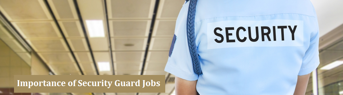The Importance Of Security Guard Jobs In India Security Guard Jobs Security Guard Job
