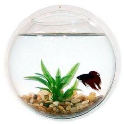 Betta Art Decorative Fish Bowl Acrylic Wall Mount Fish Bowl Fishbowl Modern Art Ssdbcb1227