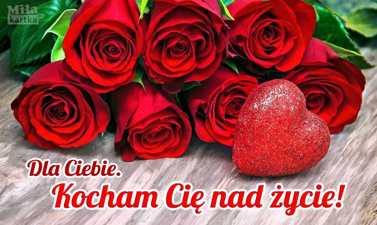 Moja Milosc Dla Ciebie Walentynki Polska Milosc Kochanie Roze Poland Kartki Valentines Love Kocham Serce Friendship Quotes Quote Of The Day Flowers