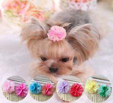 Best Hair Bows Bow Adorable Dog - 52462ba599d288df3e4142fc7d39193f  Image_586164  .jpg