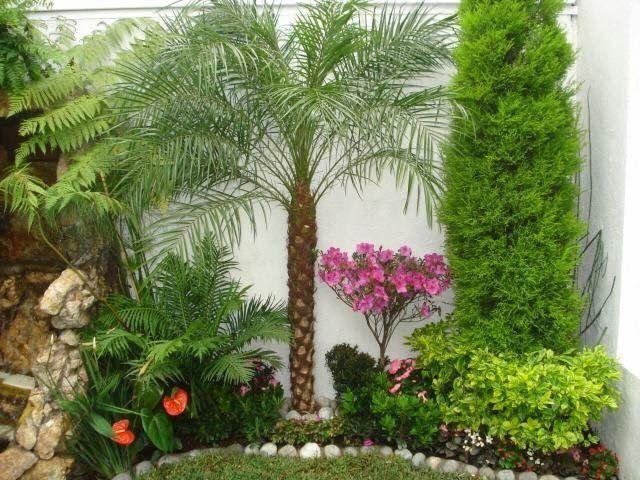 Deko, Seiten Gärten, Tropischen Gärten, Englisch Gärten, Innen Bäume,  Garten Ideen, Hinterhof Landschaftsbau, Gartenbau, Gehwege