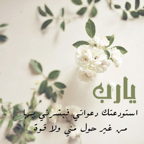يارب استودعتك دعواتي فبشرني بها من غير حول مني ولا قوة Islam For Kids Arabic Love Quotes Place Card Holders