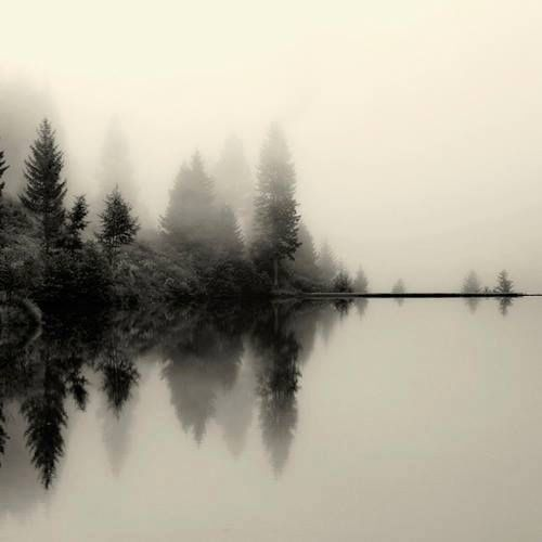 Pin By Kate Mcgreavy On Scary Nature Photography Landscape Photography Landscape