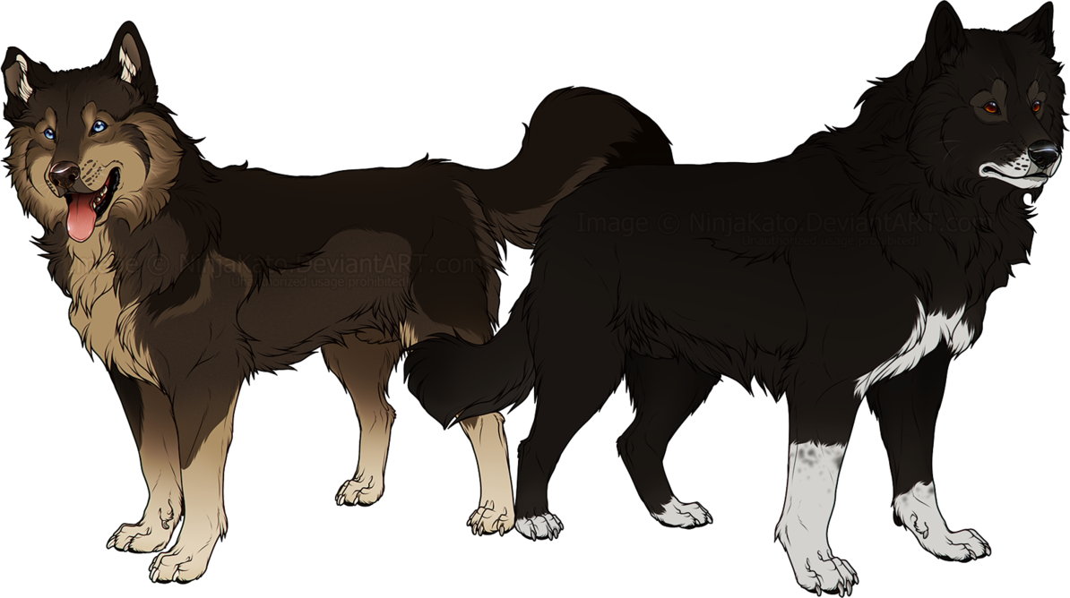 Togo And Balto By Ninjakato The Real Sled Dogs Who Saved The Children Of Nome Alaska Canine Art Dog Art Animal Drawings