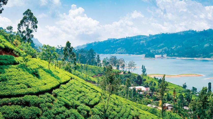 أماكن السياحه في سريلانكا 2020 Sri Lanka Travel Travel Outdoor