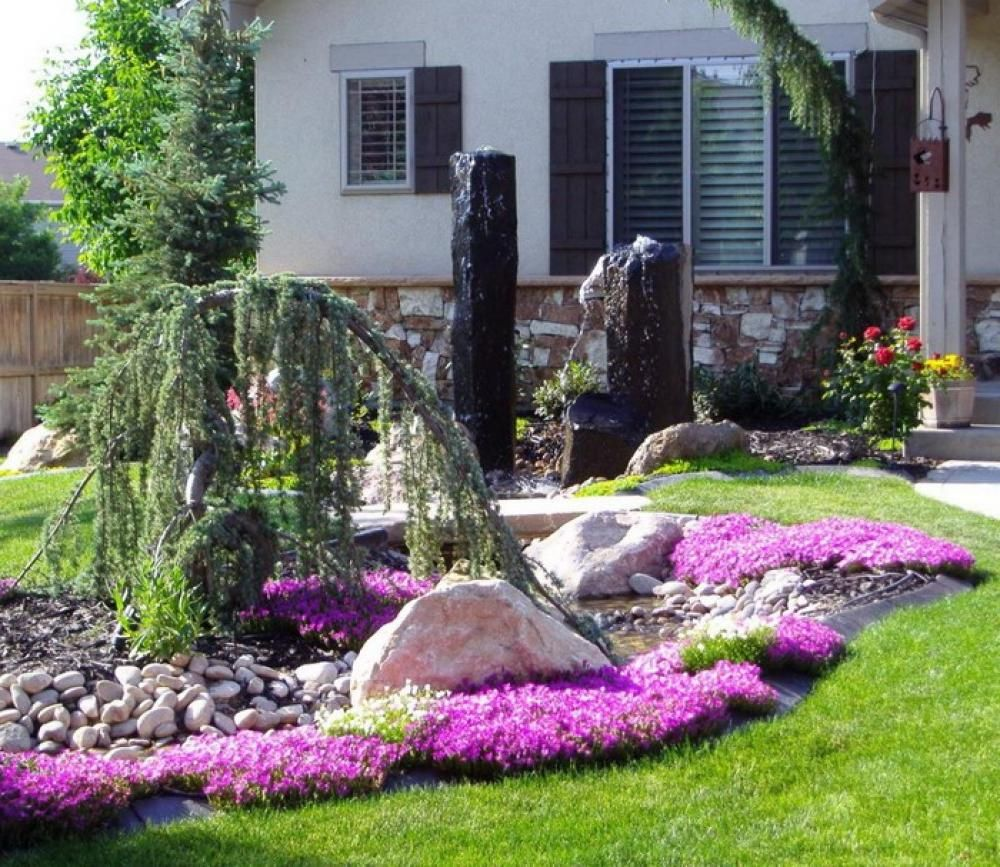 small garden yard with cute purple