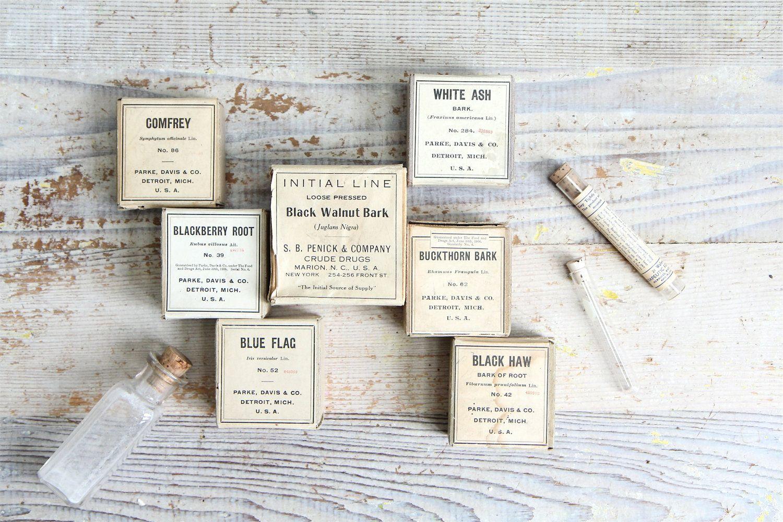 Rare Antique Natural Remedy Root Medicine / Eco Friendly, Textile Dye, Apothecary.