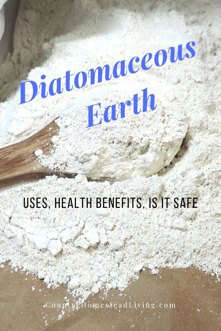 Diatomaceous Earth⎜Uses, Health Benefits, Is It Safe
