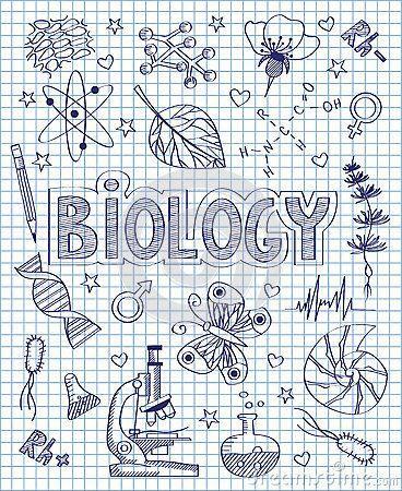 Schule In 2020 Deckblatt Schule Leichte Kritzelkunst Bio Deckblatt