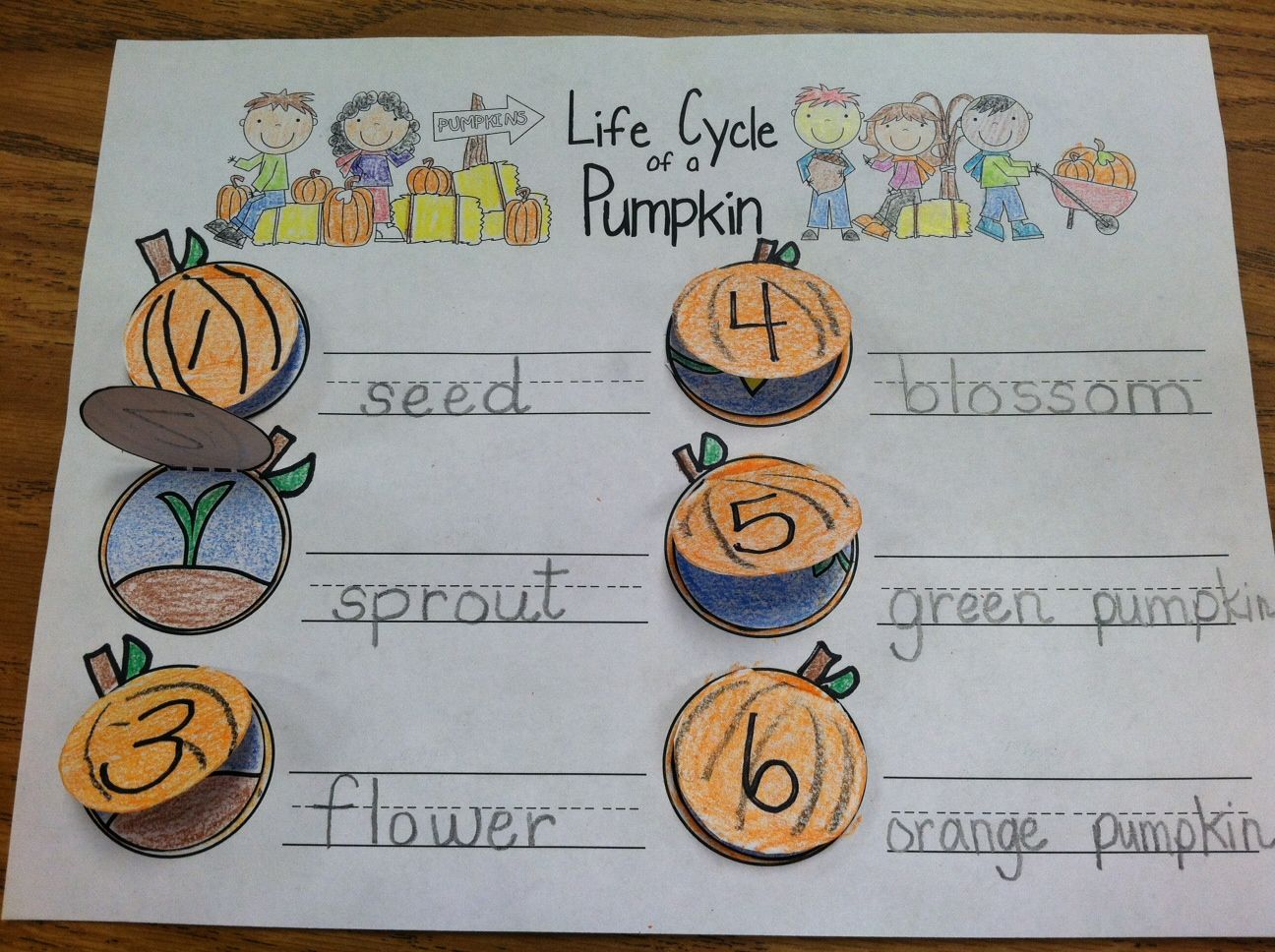 Fresh Ideas - pumpkin books with sequencing together in a Pumpkin