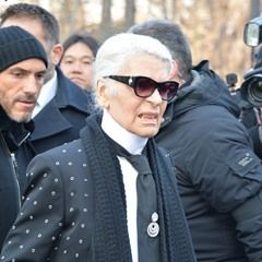 Karl Lagerfeld arrives at Dior Homme show in Paris flanked by heavy security (323379)