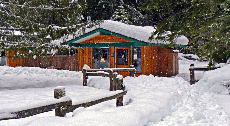 Superbe Mount Rainier Cabins   Stone Creek Lodge   Cedar Mountain Lodging Cabins At  Mt. Rainer