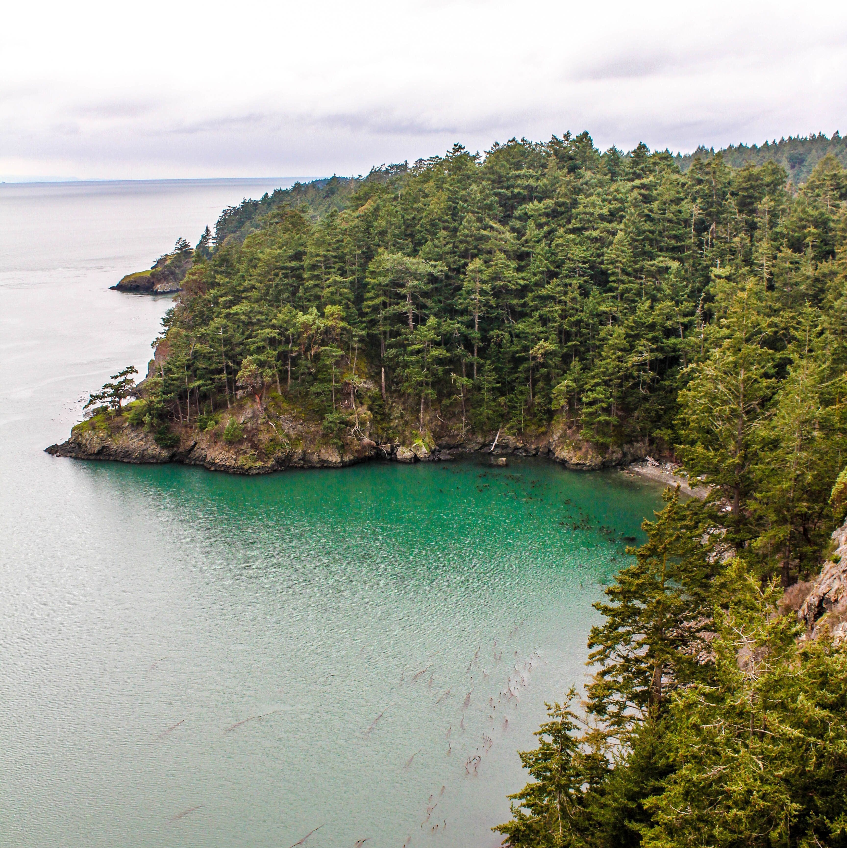 what to do on whidbey island wa