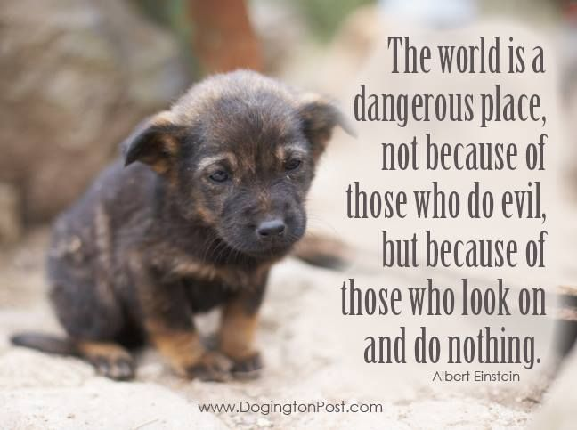 The World Is A Dangerous Place, Not Because Of Those Who