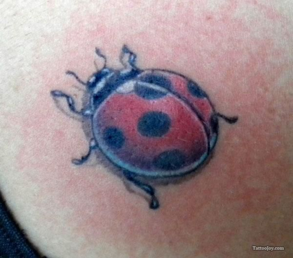 Ladybug Tattoos Designs Ideas And Meaning: Posted By Udaya Kumar At 04:26